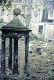The garden of no. 14 Queen Square, Bath, October 1968