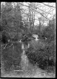 The River, Combe Hay c.1930s
