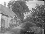 Rural thatched cottages at Ditteridge c.1920