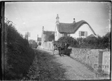 Early thatched cottages with horse & cart, Old Midford Road, c.1906