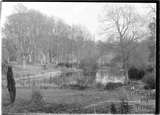 In the park, Ammerdown House, Kilmersdon, Somerset c.1938