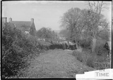 Scene in Langford, Somerset c. 1935