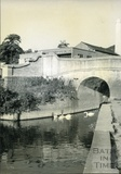 Bridge over the Kennet and Avon Canal, Spring Gardens Road, Widcombe, Bath c.1950