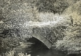 Stone bridge over the Cam Brook at Paulton c.1950s