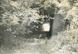The tunnel at Combe Hay c.late 1950s