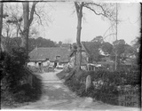 Farm with thatched roof, thought to be in Ramsbury, near Marlborough, Wilts c.1920s