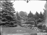 The Park, Wellington, Somerset, 1932