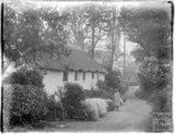 Thatched cottages in Gallox Lane, Dunster, near Minehead, Somerset, c. 1926-30