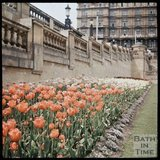 Dufaycolor view of  tulips in Parade Gardens and the Empire Hotel, May 1937