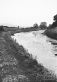 View looking upstream to Swing Bridge, Bathampton 1956