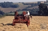 Harvesting in the Midford Valley c.1965