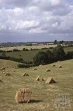 Bales of hay, Midford area 1964