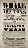 The Whale, Lower Borough Walls, Bath 1810