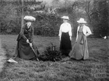 Suffragette Florence Canning planting tree with Mary Blathwayt and Annie Kenney 1909
