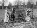 Suffragette Emmeline Pethick-Lawrence planting with Annie Kenney and Lady Constance Lytton 1909