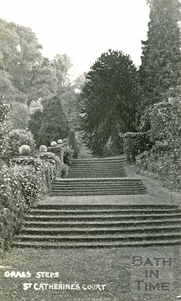 St Catherine's Court, the grass steps 1912