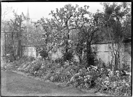 The Back garden of 32 Sydney Buildings c.1930s