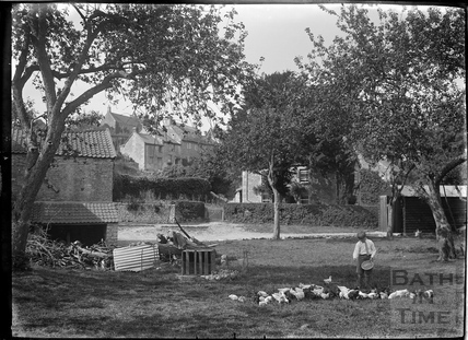 Feeding the chickens in Wellow c.1930s
