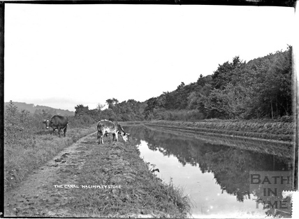 The Kennet and Avon Canal near Limpley Stoke c.1930