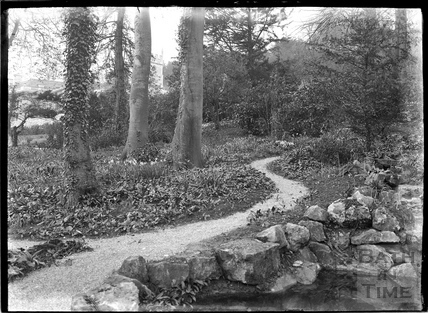 Wooded walk in the gardens of Widcombe Manor c.1920s