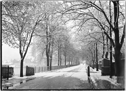 The tree lined road leading to North Parade Bridge, 25 April 1908