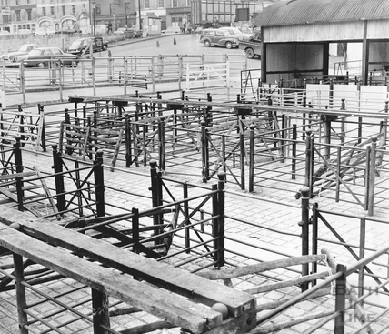 Cattle pens in Bath's Cattle Market, Walcot Street May 1970