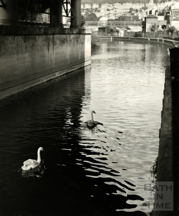 The River Avon, swans and bridges by Bath Spa Station, pre 1970