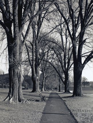 A tree-lined avenue at Royal Victoria Park, pre 1973