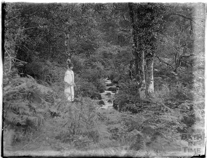 The photographer's wife Violet in Minehead Woods, 1926