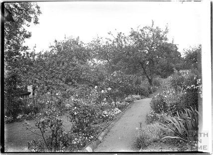 Garden in Luccombe near Minehead, Somerset,  c.1905 - 1915
