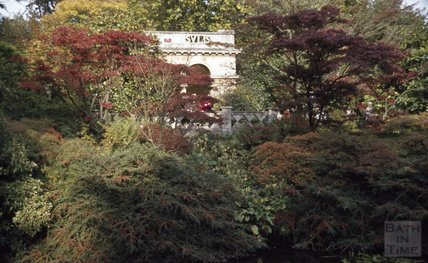 The Botanical Gardens, Royal Victoria Park, Bath, 1979