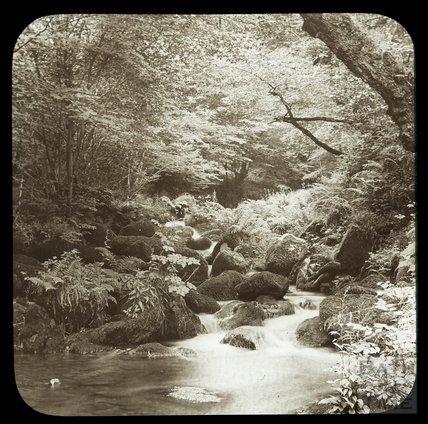 Watersmeet, on the River Lyn, near Lynmouth, c.1910