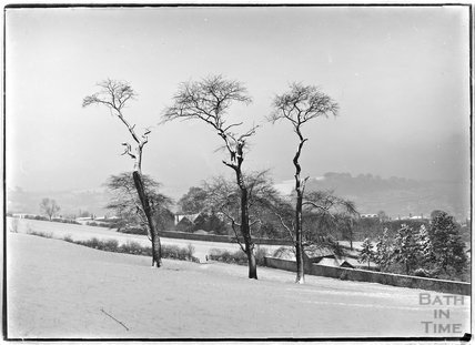 A study of three dead trees in the snow, Widcombe Bath, c.1900s