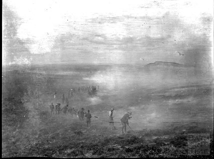 Beating a heath fire, unidentified location, c.1900s