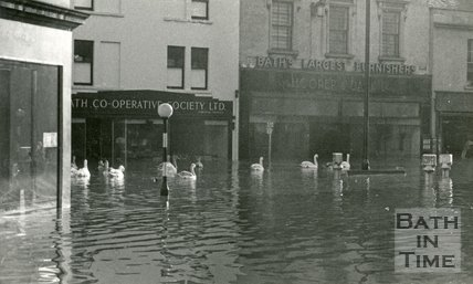 Swans in Southgate Street, Bath during the floods 1960