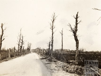 Burned out trees on the Menin Road, Ypres, Belgium