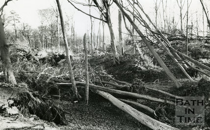 Storm Damage of January 25th, 1990