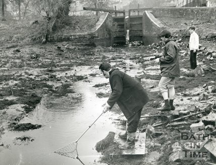 Removing fish from the Kennet & Avon canal at Widcombe, Bath, January 1970