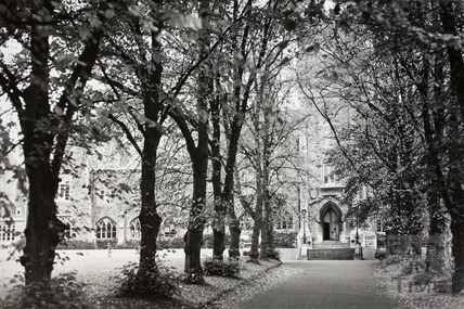 Avenue approach to the Royal School, Lansdown, Bath 1969