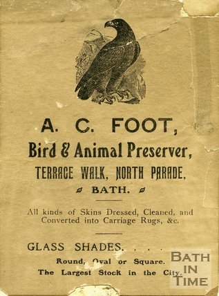 Trade Card for A. C. FOOT Terrace Walk, North Parade, Bath 1870