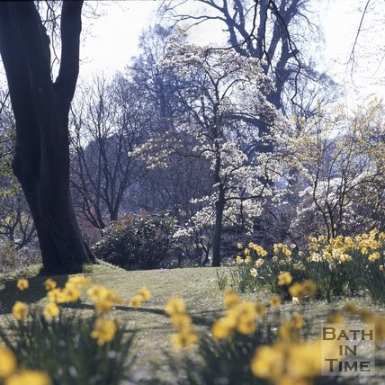 Royal Victoria Park in the spring, Bath, c.1975 - 1980