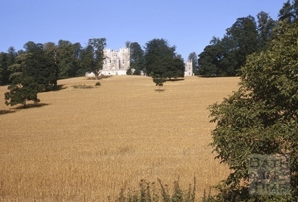 Midford Castle before harvest 1964