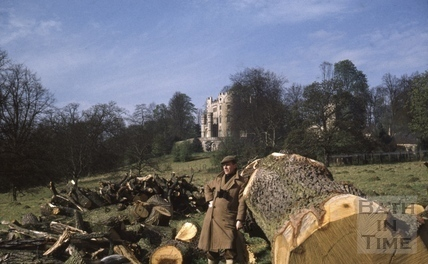 Tree felling in the grounds of Midford Castle c.1965