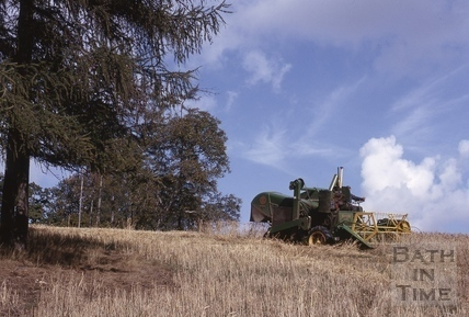 Harvesting at Midford Castle 1964