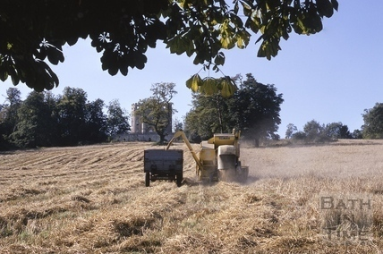 Harvesting at Midford Castle 1968