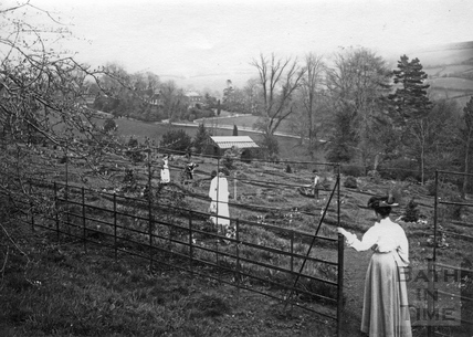 General view of Annie's Arboretum 1910