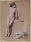 Female nude and a swan