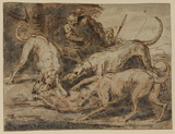 Hunting scene - hound attacked by three other hounds