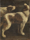 Two dogs (fragment)