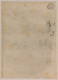 Head of a boy (verso)